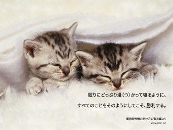 摂理の鄭明析牧師 明け方の御言葉より 眠りにどっぷり浸(つ)かって寝るように、 すべてのことをそのようにしてこそ、勝利する。