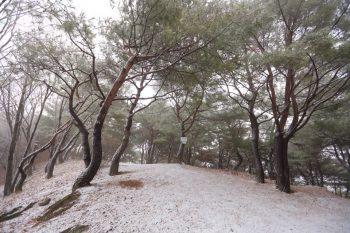 月明洞雪の散歩道