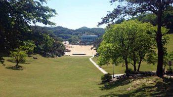 月明洞 2015年5月26日 自然聖殿芝生