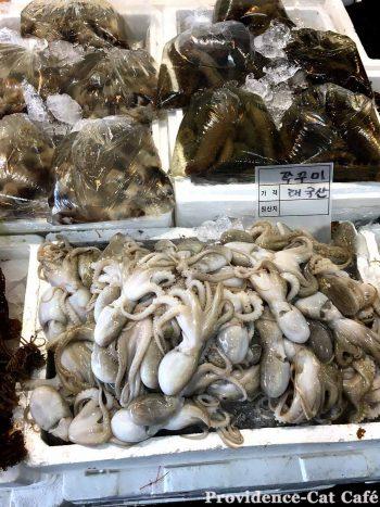 韓国大田(テジョン)の魚市場-タコ祭り