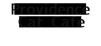 摂理の猫カフェ|宗教へカルト・ラ キリスト教福音宣教会
